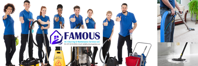 HOME DEEP STEAM CLEANING